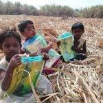 sugarcane_workers